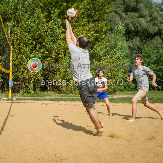 Аренда сетки для волейбола