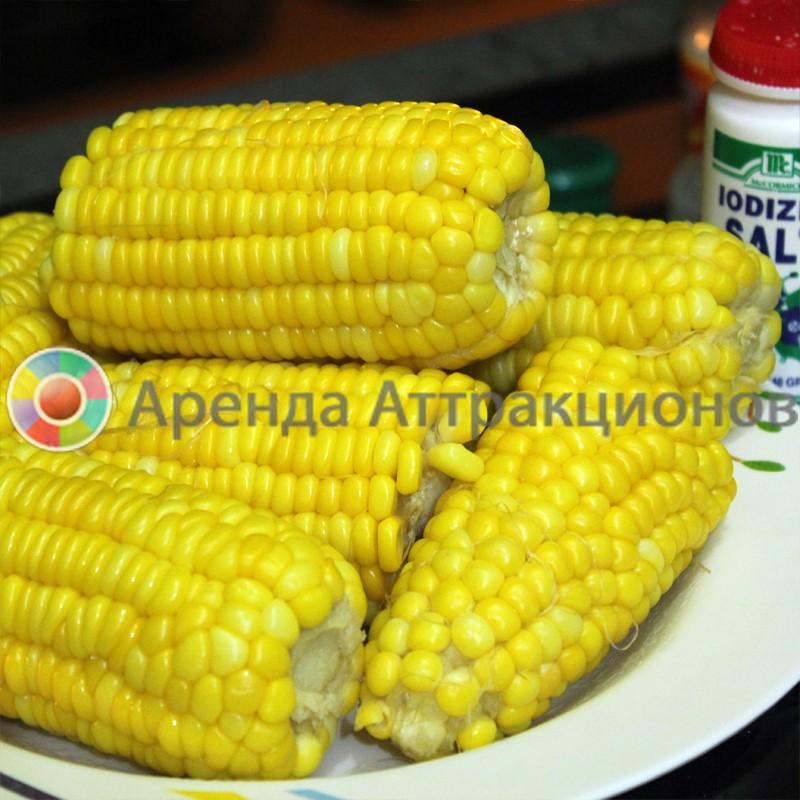 Вареная кукуруза на ярмарку
