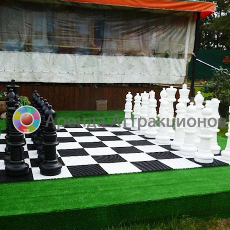 Аренда больших шахмат