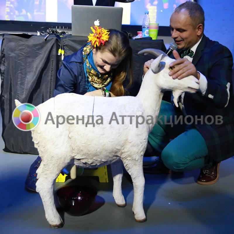 Девушка готовится к заданию на дойку козы