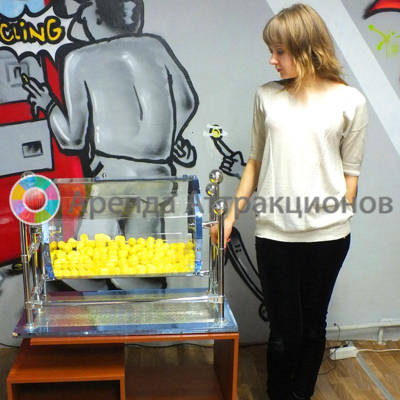 Аренда лототрона на мероприятие в Москве и МО