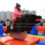 Родео Медведь прокат на праздник