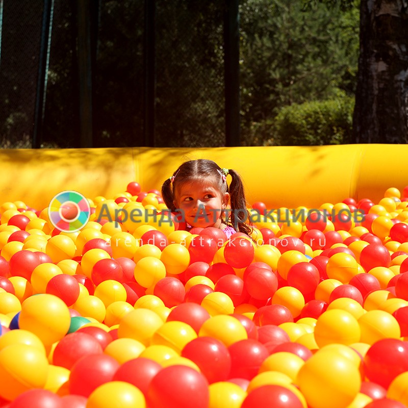 Аренда детского сухого бассейна