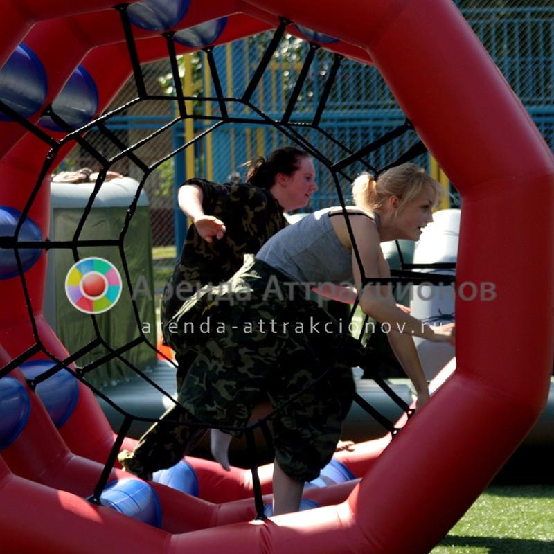 Беличье колесо Двойное в аренду на мероприятие