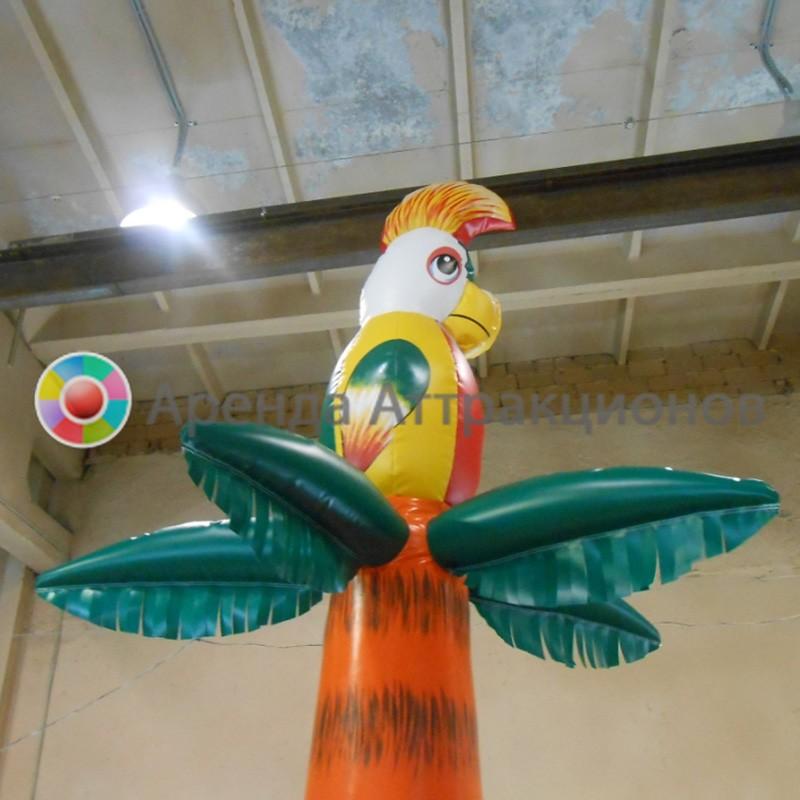 Попугай на верхушке пальмы, часть ограждения.
