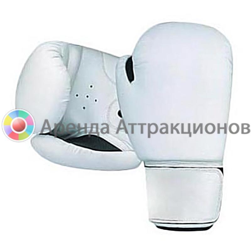 Боксерские перчатки прокат на соревнования