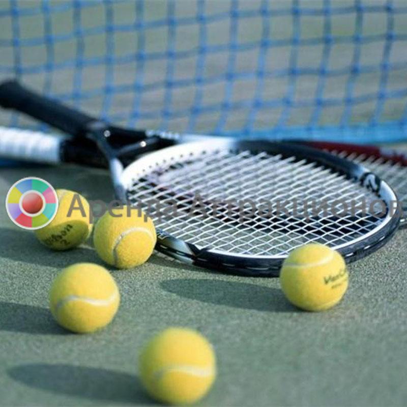 Ракетки для большого тенниса с мячами на меропряитие