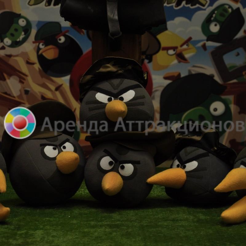 Аренда аттракциона Злые птицы Милитари