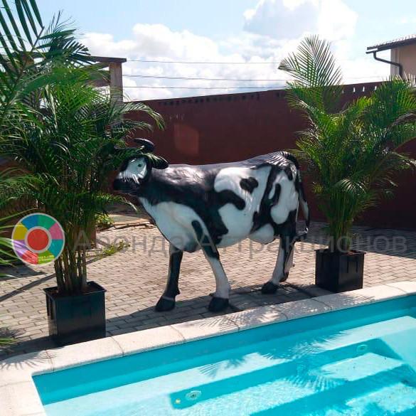 Пивная корова для вашего праздника