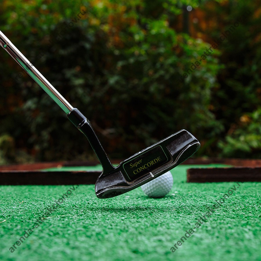 Аттракцион мини гольф в аренду на мероприятие
