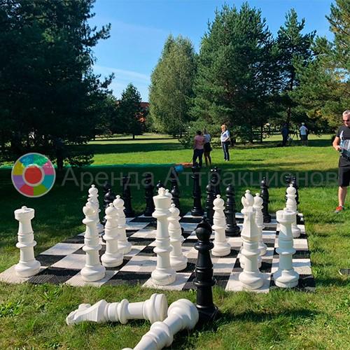 Аренда огромных шахмат в аренду