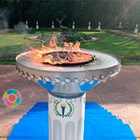 Чаша Олимп для Полосы препятствий Олимпийские кольца
