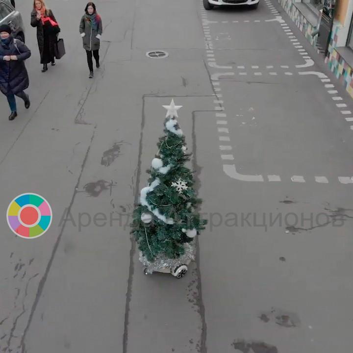 Гонки радиоуправляемых елках для мероприятий в аренду