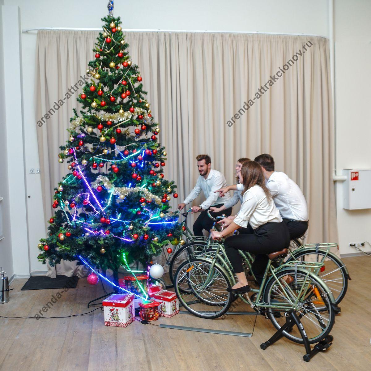 Размер велоёлки в аренду