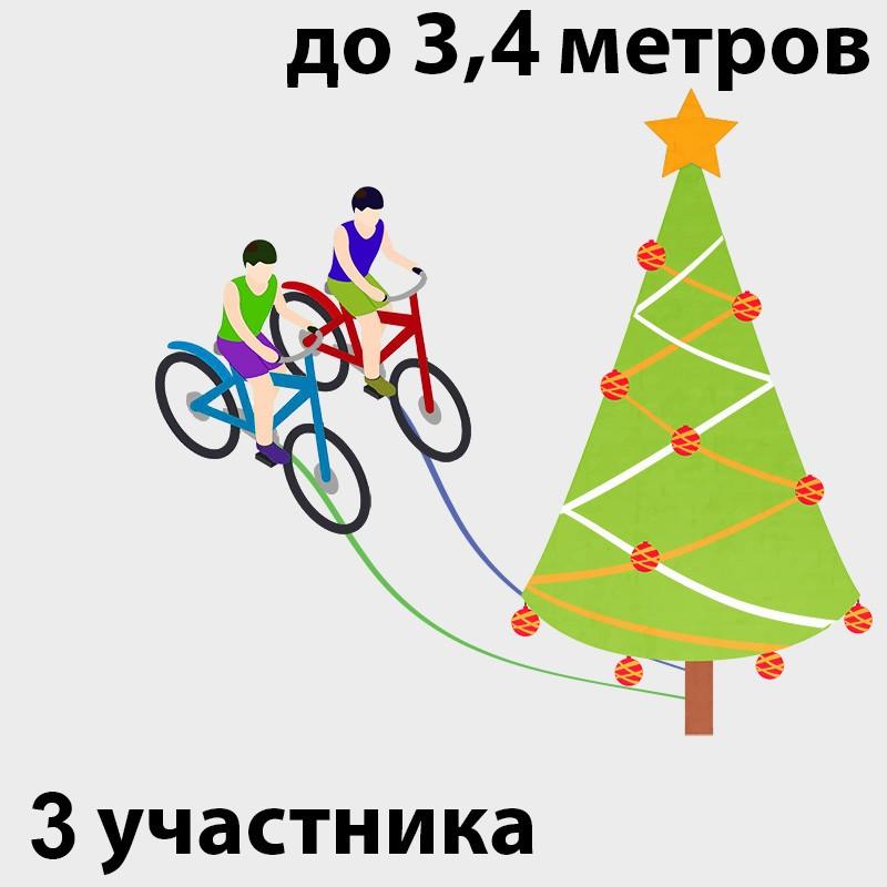 Велоёлка в аренду на праздник