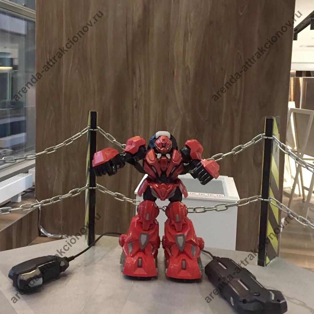 Битва роботов на специальном ринге
