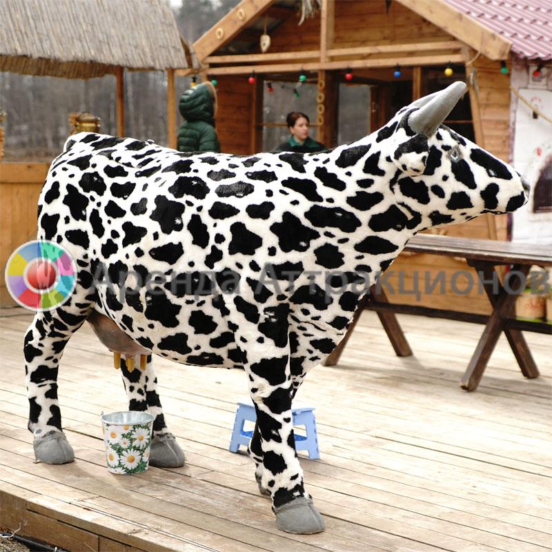 Пивная корова в аренду