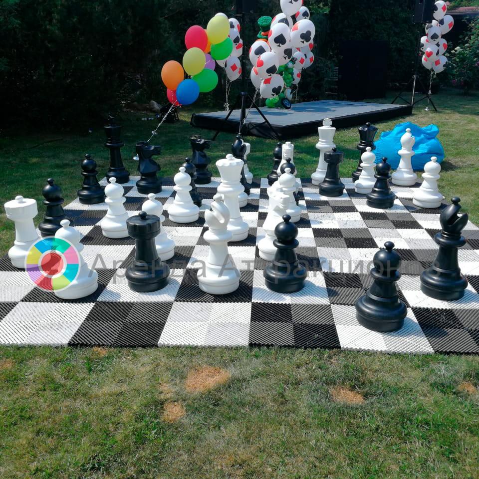 Шахматы большие в аренду