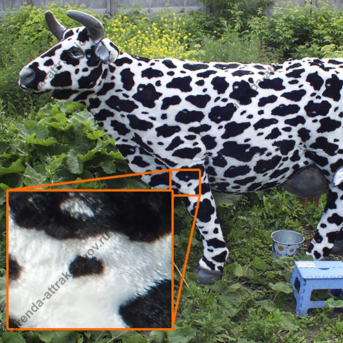 Аренда аттракциона Корова на мероприятие