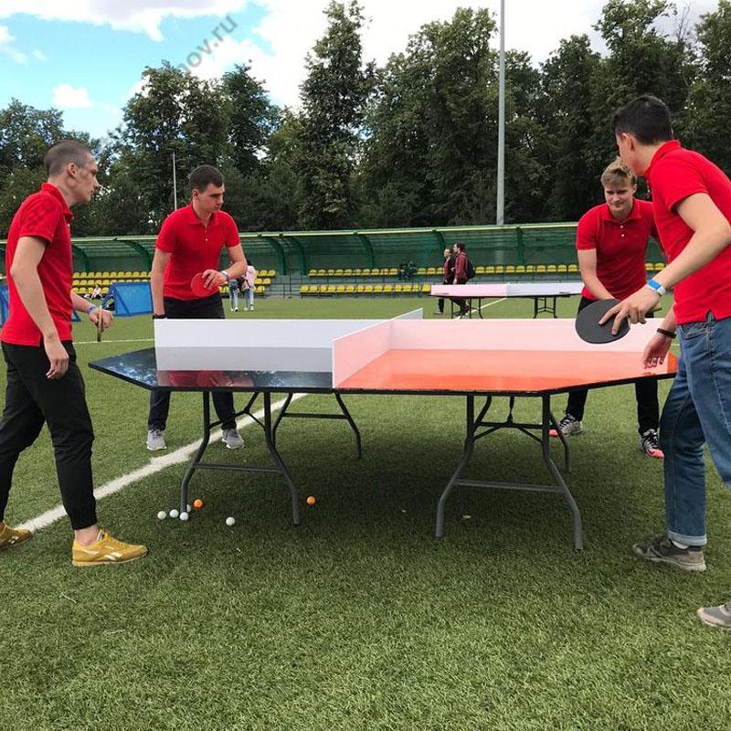 Настольный теннис на компанию