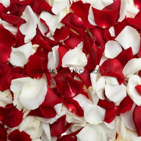 Лепестки роз для кэнди бара и сладкого стола