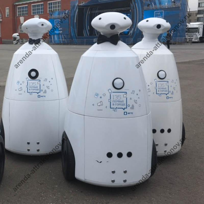 Робот для продвижения продукции