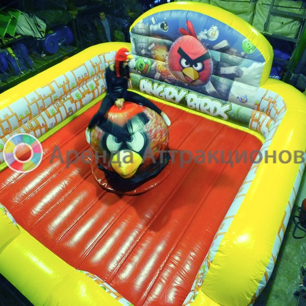 Родео Angry Birds в аренду