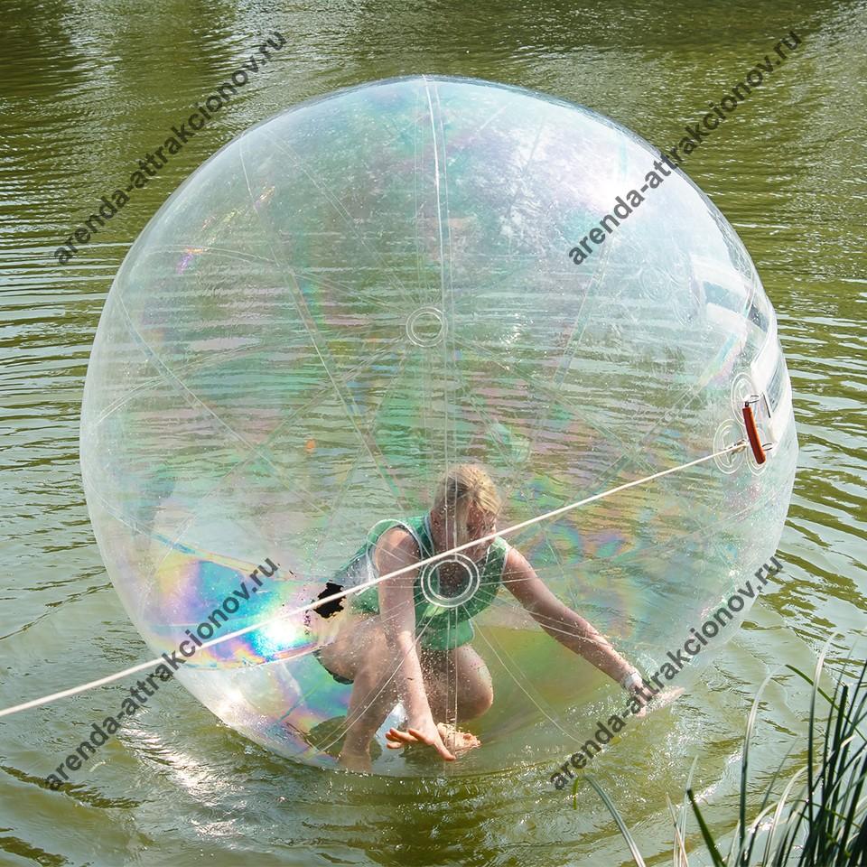 Водный шар напрокат