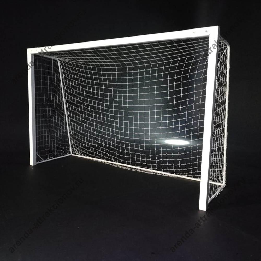 Спортивные ворота для Флорбола